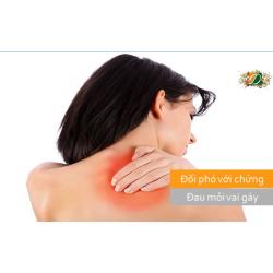 Đối phó với chứng đau cổ vai gáy