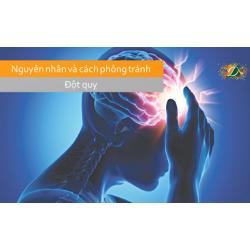 Nguyên nhân và cách phòng tránh đột quỵ